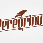 logo peregrinus